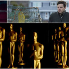Oscar 2017 : Black Nomination e chi vincerà…